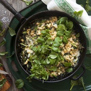 Kokta vita bönor med Grönkål, Svartkål, Tatsoi och Krasse