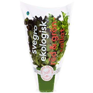 Svegro Röd & Grön Sallat