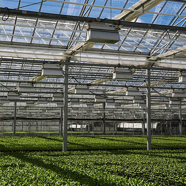 Svegro - Hållbara odlingar