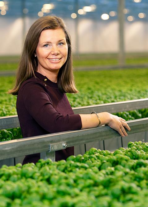 Caroline Wetterstrand, Försäljningschef