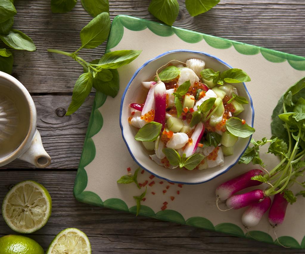 Cevice på kolja med Limebasilika, chili och forellrom