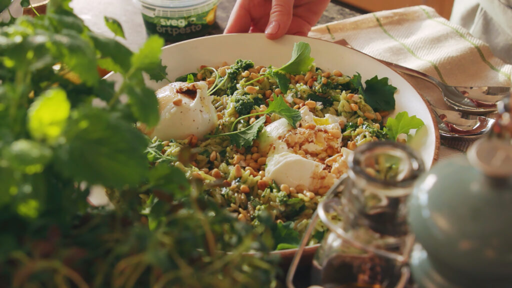 Grön risoni med burrata, rostade pinjenötter och örtpesto