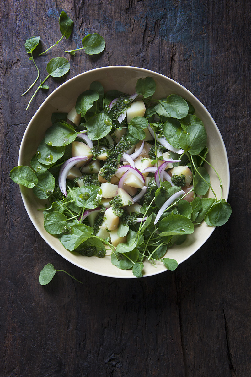 Krasse- och potatissallad med Salvia- och vitlöksolja