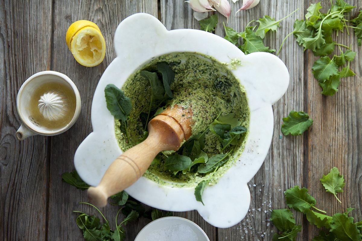 Grönkålspesto på Finbladig Grönkål i Kruka från Svegro Orangeri